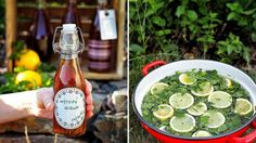 Mátový sirup Foto: Pickles, Cooking Tips, Cucumber, Smoothie, Homemade, Canning, Drinks, Bottle, Food