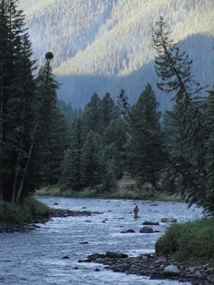 Watching for fish on the Gallatin River Big Sky Montana