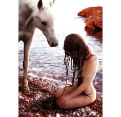 The Selkie by amberskyfire on DeviantArt Water Fairy, Sea Siren, Water Nymphs, Natural Horsemanship, Fantasy Photography, Water Element, Horse Photos, Story Inspiration, Faeries