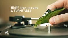 Diego Stocco - Duet for Leaves & Turntable