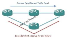 mpls end-to-end protection primary path and secondary path,MPLS Recovery