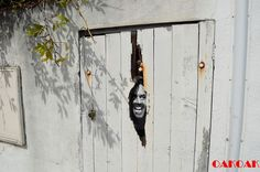 Un artiste de rue qui crée et samuse avec lenvironnement qui lentoure Génial