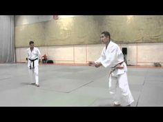 ▶ Hiroshi Katanishi Educatif Sol1 - YouTube
