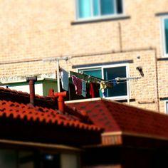 .@jackey0417 | #지붕 #빨래 | Webstagram
