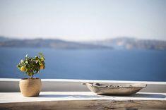 Plan your trip. Santorini Caldera, Santorini Greece, Santorini Photographer, Greek Isles, Travel Info, Morning Light, Greece Travel, Plan Your Trip, Traditional House