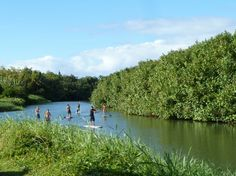 Stand-up paddleboard your way through Kauai's Hanalei River | HAWAII Magazine