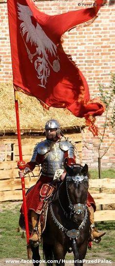 Polish Hussar bearing the eagle. Medieval World, Medieval Armor, Medieval Fantasy, Knight Armor, Red Knight, Templer, Renaissance, Arm Armor, Fantasy Armor