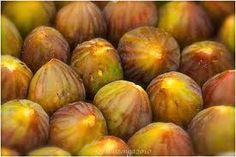 figsתאנים