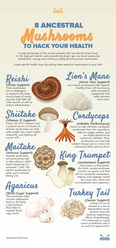 ancestral mushrooms infographicOne of the main philosophies of an ancestral or Paleo approach is to eat foods closely connected to how we've evolved over hundreds of thousands of years. Read the full article here: http://paleo.co/ancestralshrooms