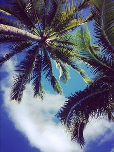 Find images and videos about love, beautiful and summer on We Heart It - the app to get lost in what you love. Island Girl, Find Image, We Heart It, Summertime, Coastal, Clouds, Explore, Beach, Water