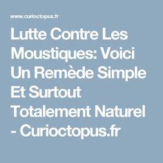 Lutte Contre Les Moustiques: Voici Un Remède Simple Et Surtout Totalement Naturel - Curioctopus.fr