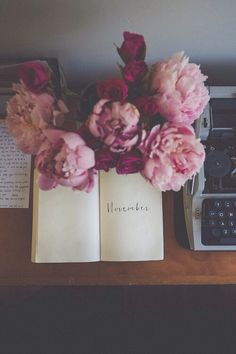 jar of peonies and a sketchbook now go write your November story
