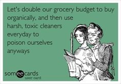 I am tired of spending so much money on cleaning chemicals! I am going to clean just with Norwex cloths and water! This has to be a healthier way for the environment and my lungs!