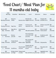 11 Month Baby Food Chart, Food Chart/ Meal Plan for 11 Months old baby