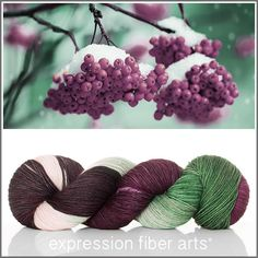Expression Fiber Arts, Inc. - WINTER BERRIES 'RESILIENT' SUPERWASH MERINO SOCK yarn -  deep berry plum, evergreen and ivory, $24.00 (http://www.expressionfiberarts.com/products/winter-berries-resilient-superwash-merino-sock.html)
