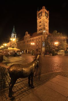 """torún, rynek staromiejski"" by Mathieu Bertrand Struck on Flickr - Torun (UNESCO World Heritage Site since 1997), Poland, July 2011."
