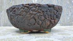 Bonsai Garden, Garden Art, Serving Bowls, Decorative Bowls, Frozen, Channel, Facebook, Tableware, Youtube