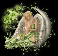 Coloque a existência dos anjos no seu coração Eles não sobrevivem no mundo da razão