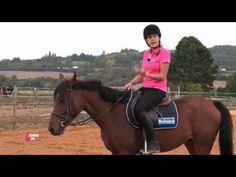 Comment créer un lien avec votre cheval ? - Equidia Life - YouTube