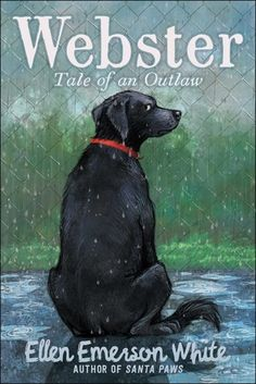 """Read """"Webster Tale of an Outlaw"""" by Ellen Emerson White available from Rakuten Kobo. A cynical shelter dog learns to let down his guard and form a new animal family in this heartwarming and humorous friend. Shelter Dogs, Rescue Dogs, Super Reader, Friendship Stories, Meadows Farms, The Stoics, Need Friends, No Bake Treats, Children's Literature"""