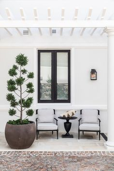 sticks & stones - Bellevue Hill Living Room Trends, Living Spaces, Contemporary Architecture, Interior Architecture, Interior Design, East Coast Style, Rooftop Garden, Balcony Gardening, Interiors Magazine