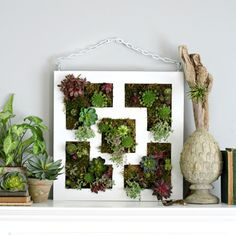 No Space is too Small for a Vertical Garden  - 50 Vertical Garden Ideas That Will Change the Way You Think About Gardening | https://homebnc.com/best-vertical-garden-ideas-designs/  | #garden #gardening #vertical #ideas #decorating #decor #decoration #idea #home #homedecor #lifestyle  #beautiful #creative #modern #design #homebnc