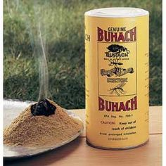 """Buhach Insect Powder  Nature's ""secret"" bug repellent — no synthetic chemicals!  Made of ground pyrethrum flowers, Buhach powder is Mother Nature's organic insecticide. Repels spiders, ants, fleas, roaches, flies and mosquitoes without harsh chemicals.  Reviews give it 4.6 stars out of 5!"""