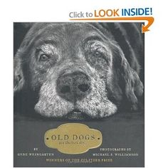 Old Dogs are the Best Dogs, by Gene Weingarten. Photography by Michael Williamson.  Ooooh, I want to read this!