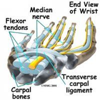 Carpal Tunnel Carmel Valley CA - Chiropractic Center of Carmel Valley Carpel Tunnel Syndrome, Chiropractic Center, Carmel Valley, Carpal Tunnel, Bone And Joint, Medicine, Google, Sports Physical Therapy, Hs Sports