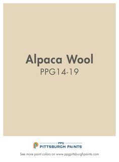 Alpaca Wool PPG14-19 from PPG Pittsburgh Paints. Neutrals are soft colors that tend to work well in many different settings.