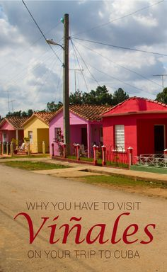 Why You Have To Visit Viñales On Your Trip To Cuba. Viñales is a great escape from the busy cities in Cuba such as Havana. The valley is perfect for horse riding and checking out the tobacco farms. Travel Advice, Travel Guides, Travel Tips, Travel Destinations, Travel Set, Travelling Tips, Solo Travel, Vinales, Varadero