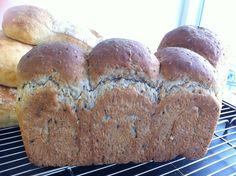 Multi grain sandwich bread with brown levain