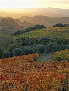 chianti wine country - Tuscany