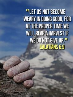 Galatians 6:9 (NIV) - Let us not become weary in doing good, for at the proper time we will reap a harvest if we do not give up.