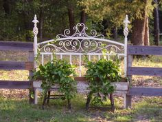 Iron headboard with reclaimed lumber used as planter and old chair legs used as base. Looks great