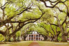 Framing Photography, Photography Gallery, City Photography, Artistic Photography, Fine Art Photography, Louisiana Art, New Orleans Art, Photo Canvas, Print Pictures