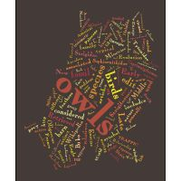 Site that lets you create your own word clouds/word art.  Really cool.  tagxedo.com Educational Websites, Educational Technology, Art Classroom, Classroom Organization, Create Word Cloud, Tagxedo, Forms Of Poetry, Tag Cloud, Descriptive Words