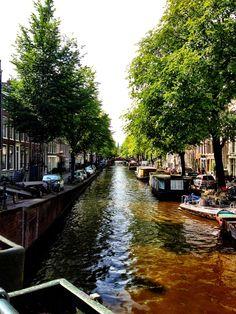Afternoon Amsterdam Ambling