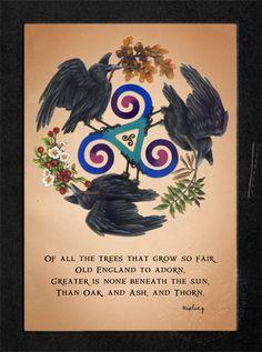 (: im a hawthorn (druid zodiac) Magick, Witchcraft, Rabe, Illustration, Book Of Shadows, Deities, Tarot, Signs, Poster