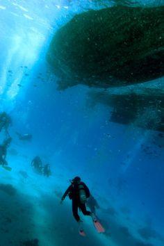 Diving Egypte