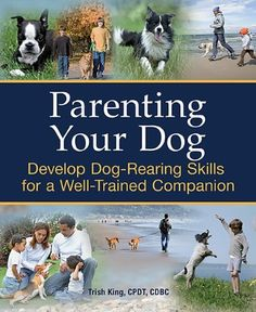 Parenting Your Dog https://www.unusual-gifts.net/shop/parenting-your-dog/ #dog #dogs #unusualgifts #gifts #giftshop #birthdaypresents #giftsforher #giftsforhim