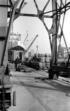 Dock workers and cargo Royal Victoria Dock Canning Town London c1945c1965 A crane loads bales of wool into a Thames barge A larger ship the...