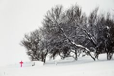 Snjór (neige) | Christophe Jacrot photographie