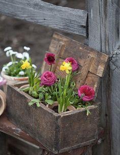 vardo flowers, decorating with flowers