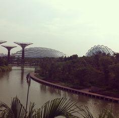 Uma volta no parque? Este é o Gardens by the Bay em Cingapura! #singapore #statusfera