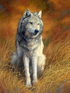 Old and Wise by Lucie Bilodeau Wolf