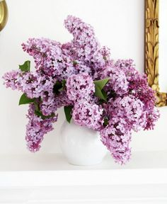 Beautiful, timeless Lilacs...my all-time favorite