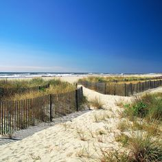 Dunes and beach at Ocean City, New Jersey