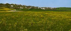 campi delle Crete senesi