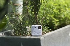 Wimoto's - app-enabled sensors to keep an eye on the climate in your home, get alerts on water leaks, or take better care of your plants. $40/each